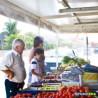 Brumibox 10 buses pour fruits et légumes